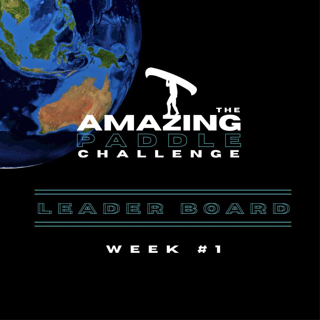 Amazing Paddle Challenge (1)